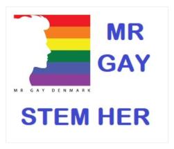 Bjorn Mr. Gay Denmark